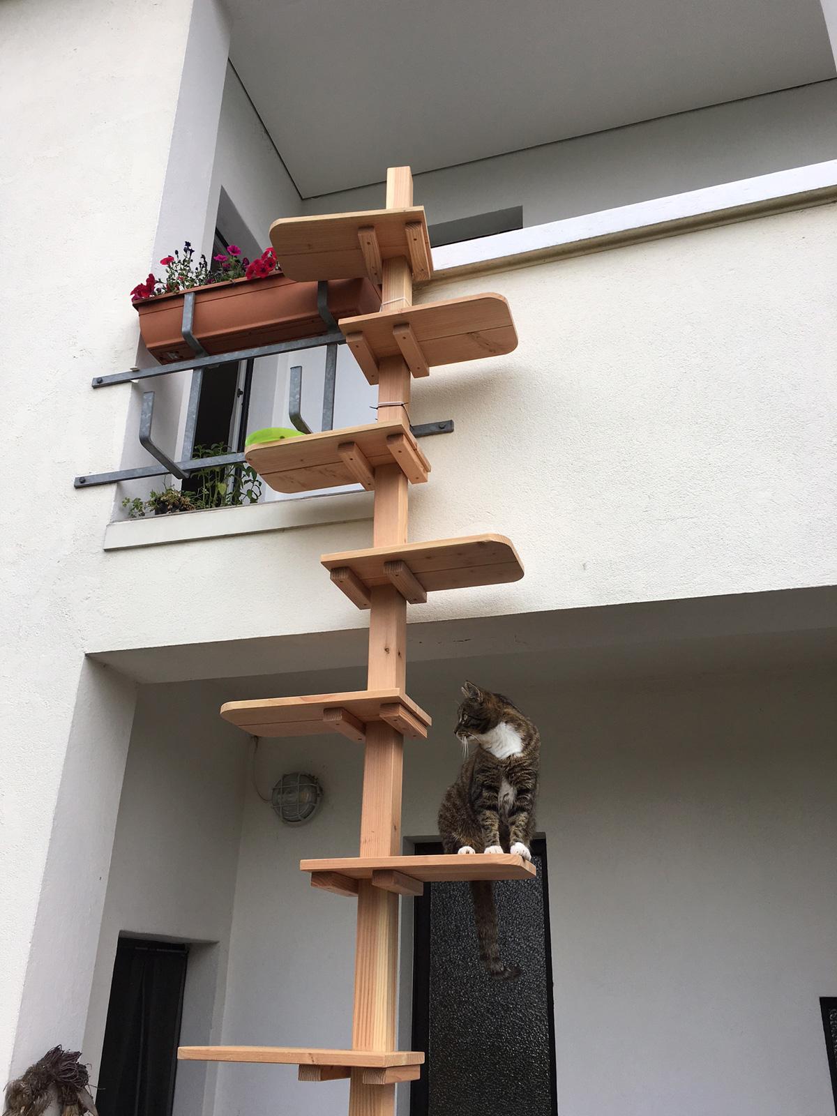 Die Miaudo Katzentreppe Aus Massivholz Fur Balkon Hauswand Und Co